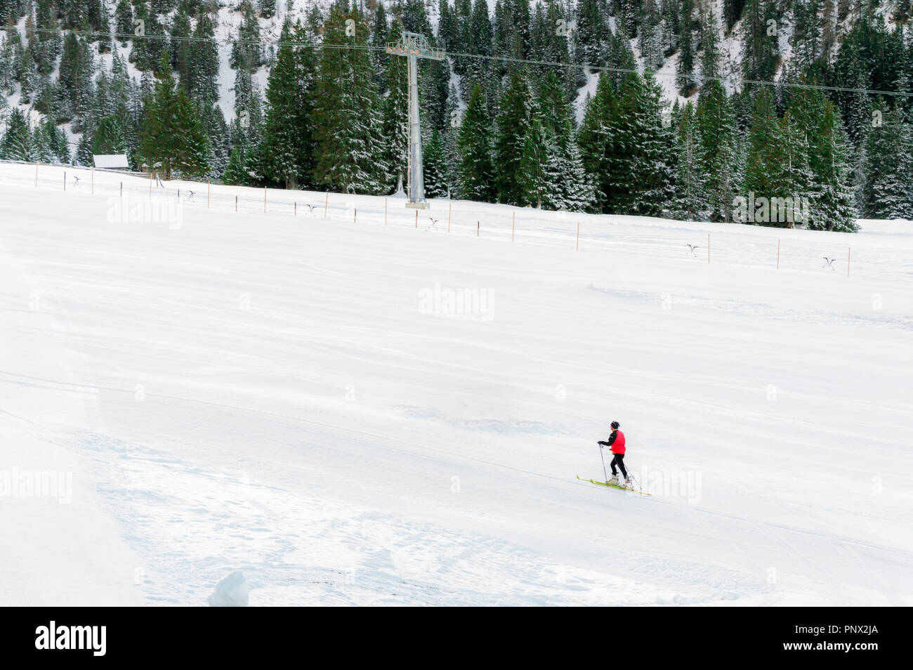 Minimal style winter landscape with ski slope full of snow, surrounded by snowy fir trees, and a single skier, in Ehrwald, Austria. Stock Photo