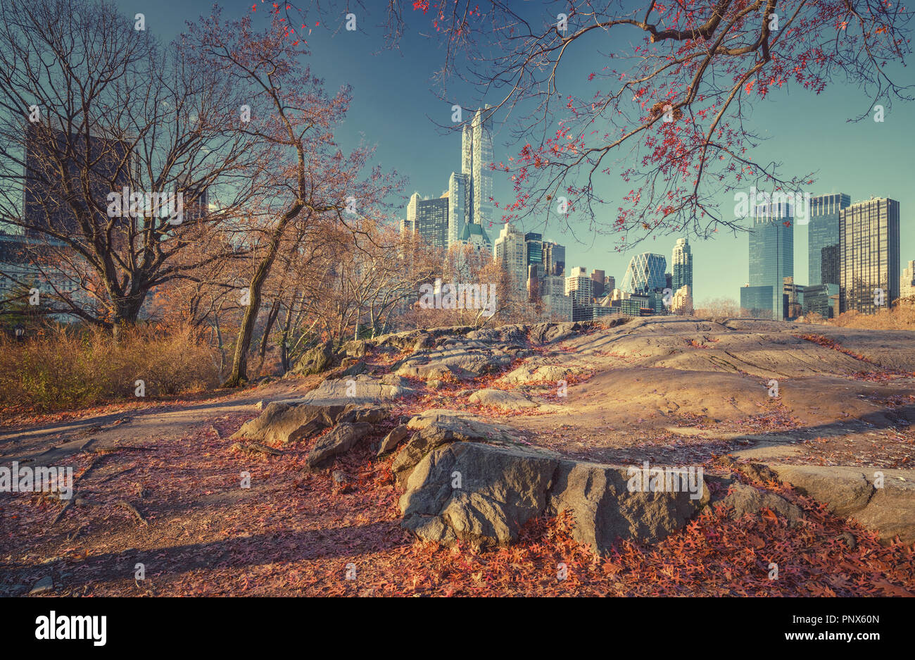 Central park at autumn morning - Stock Image