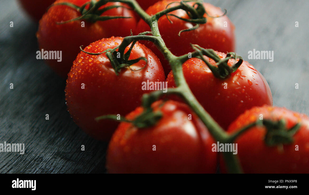 Twig with ripe red tomatoes - Stock Image