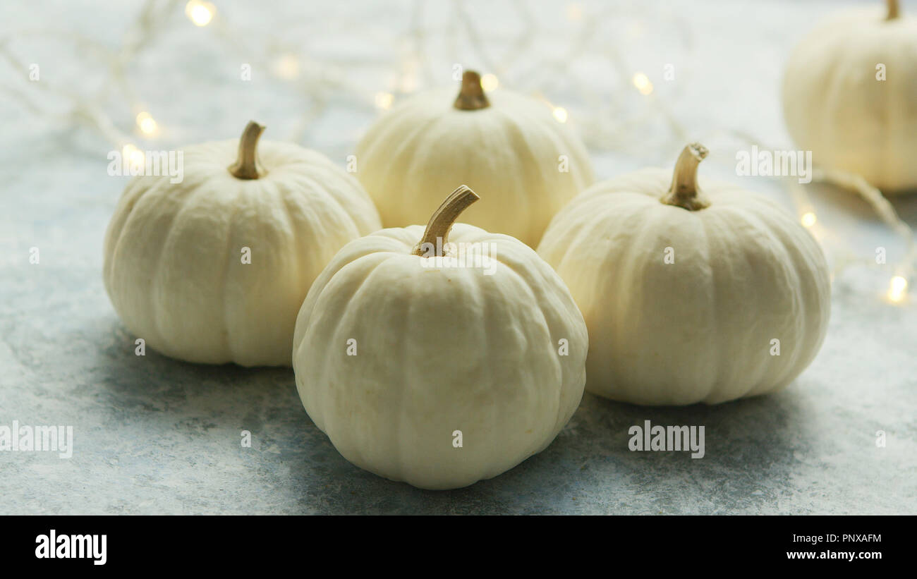 White pumpkins with garland - Stock Image