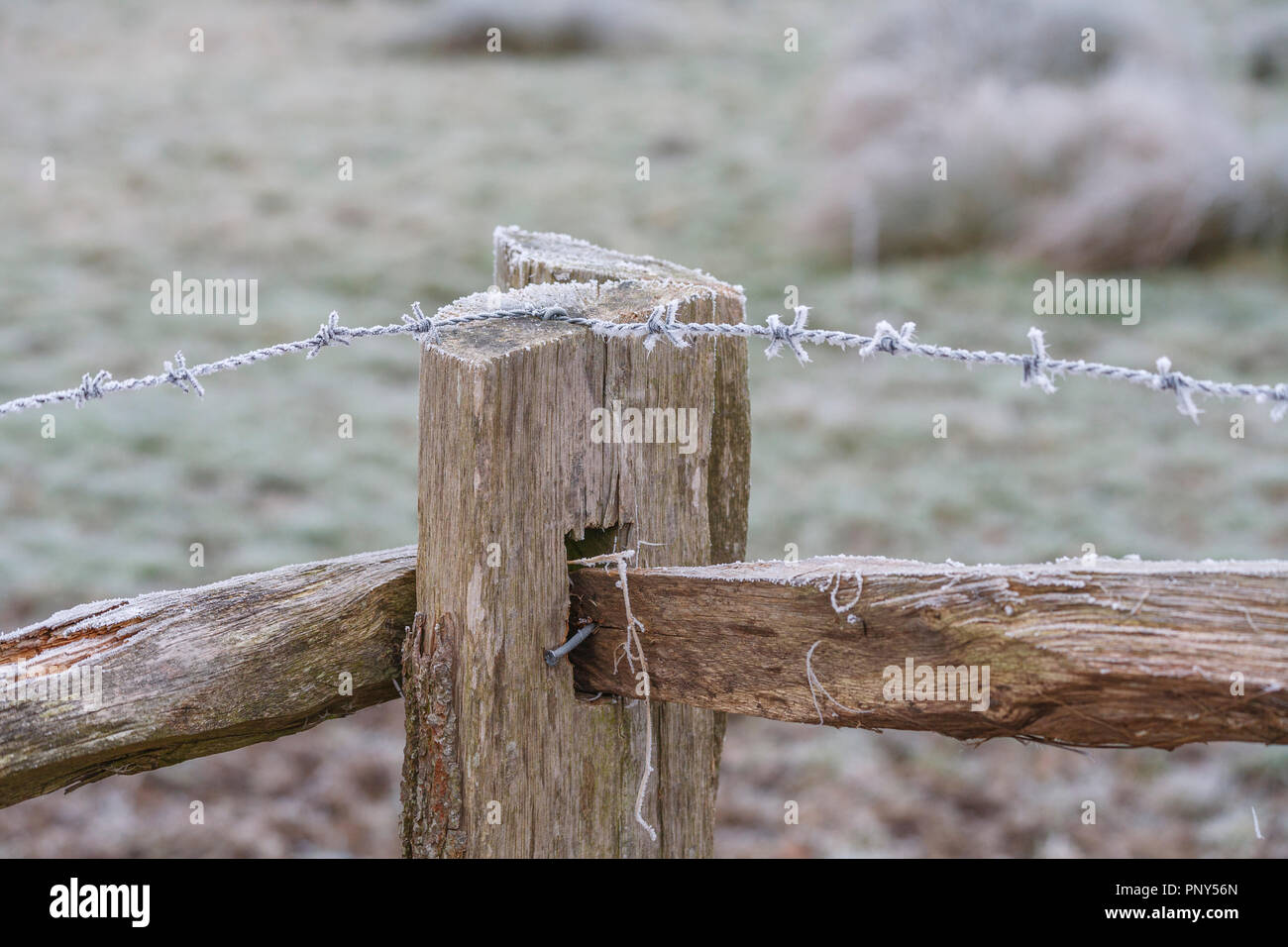 Wire Rail Stock Photos & Wire Rail Stock Images - Alamy