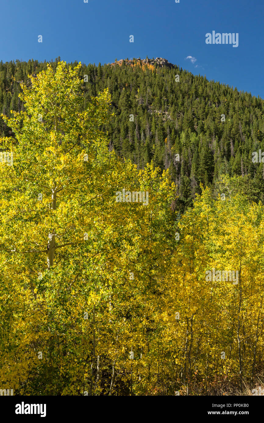 View of Lumpy Ridge from the Cow Creek trail in Rocky Mountain National Park, Estes Park, Colorado. - Stock Image