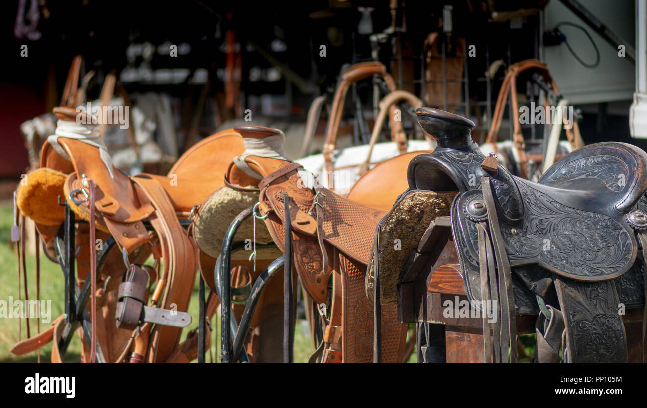 Grass Valley, California, USA. 22 September 2018.  Draft Horse Classic and Harvest Fair at the Nevada County Fairgrounds in Grass Valley. This Classic is the premier Draft Horse show in the western United States, and features six majestic performances and other non-stop entertainment in between classes. Credit: AlessandraRC/Alamy Live News - Stock Image