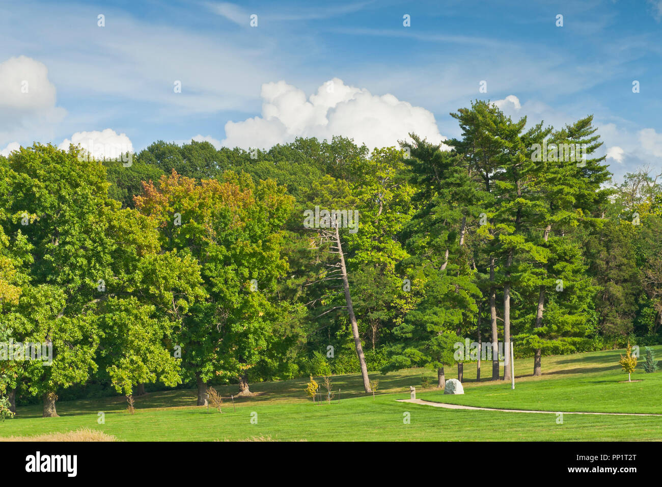 Puffy clouds protrude above trees with a hint of red autumn foliage among the green at St. Louis Forest Park on an afternoon in early October. - Stock Image