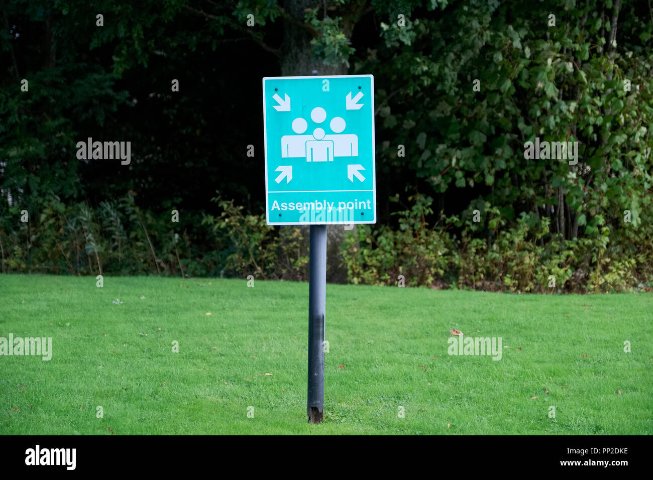 Fire assembly point sign at workplace car park - Stock Image