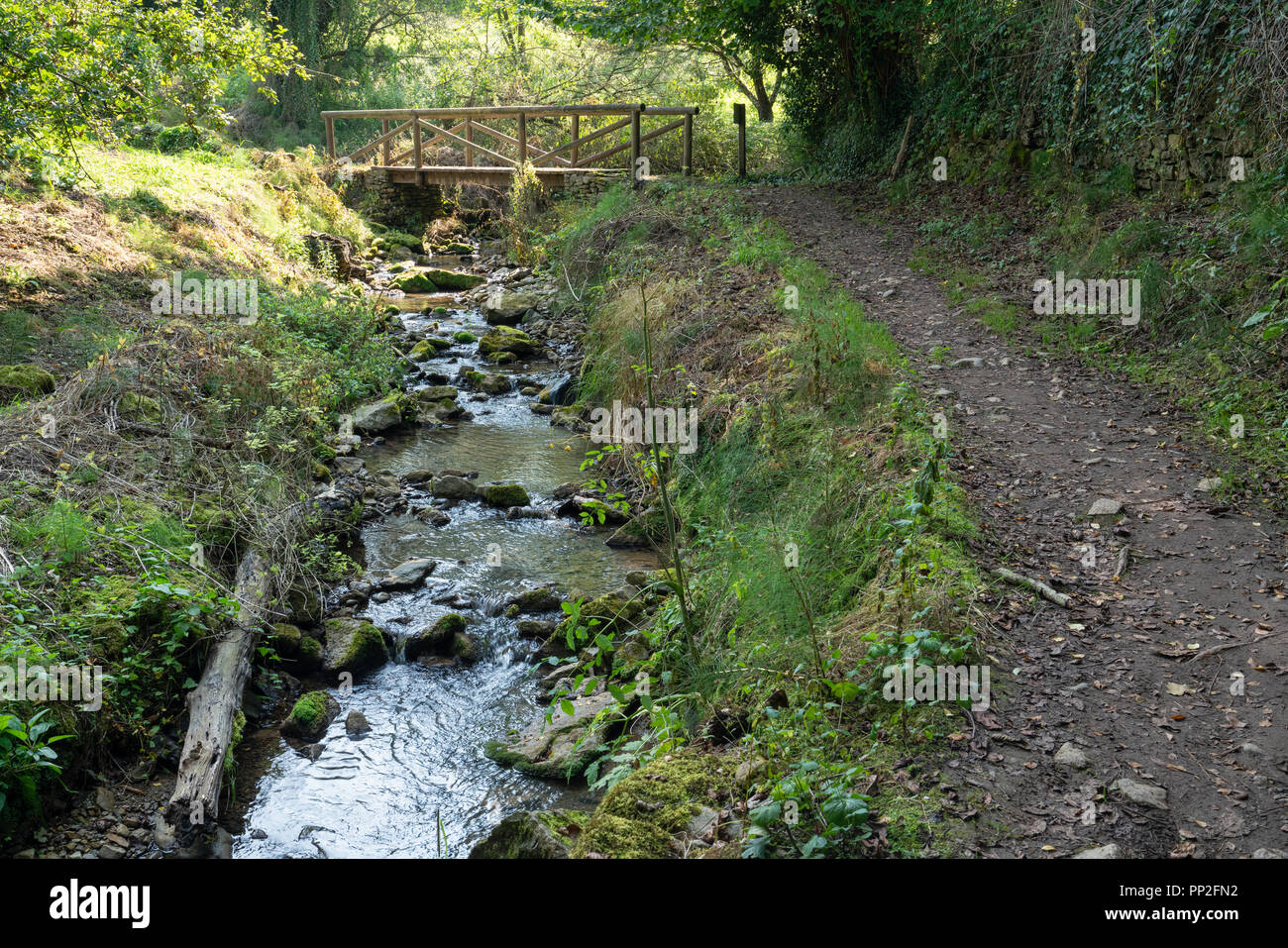 Camino de Santiago trail between Grado and Salas, Asturias, Spain - Stock Image