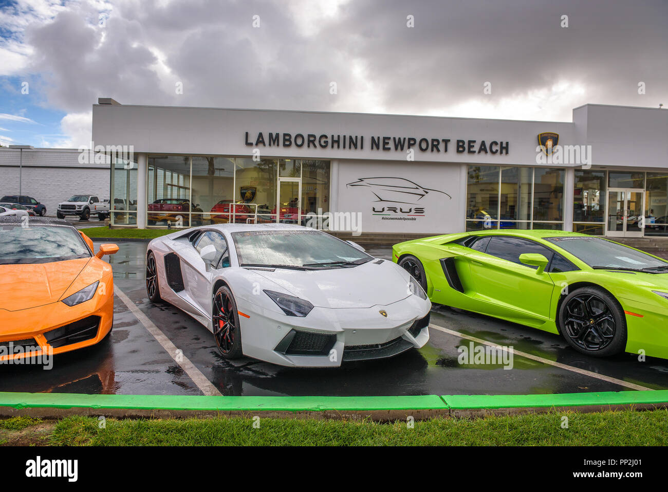 Newport Beach California Usa January 9 2018 Lamborghini Cars