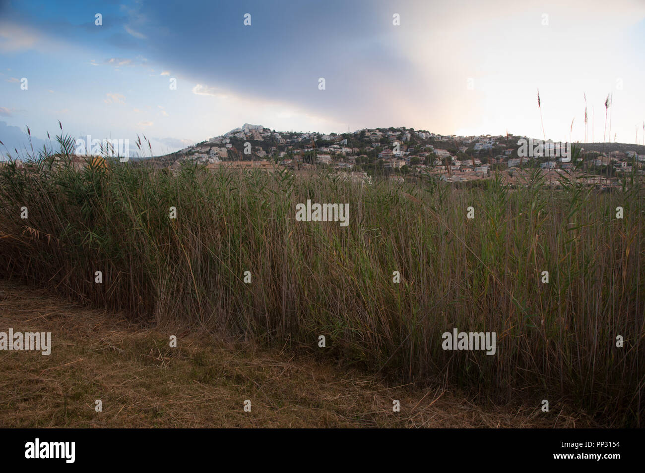 The reeds and marshlands run through the centre of the spanish town of Peniscola in Northern Spain, date back to medieval times. - Stock Image