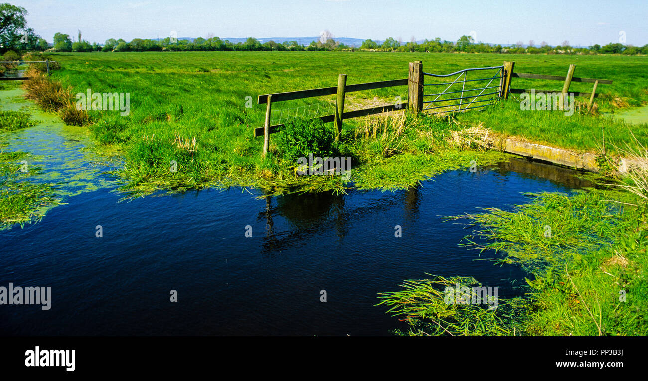 Nash and Goldcliff SSI, Gwent Levels, South Wales, Wales, UK, GB. - Stock Image