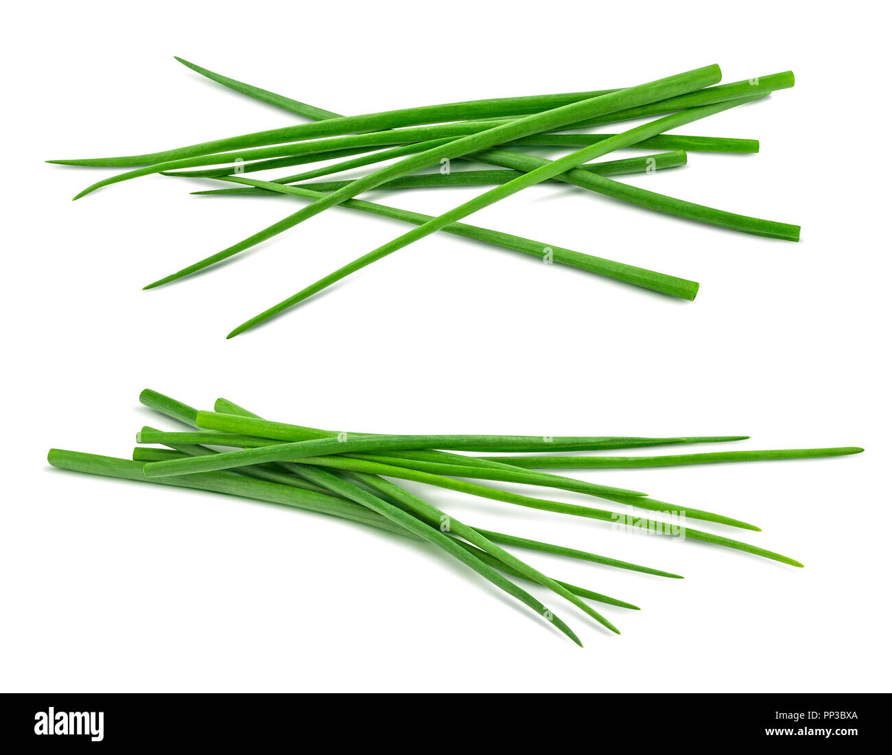 Double scallion spring onion bunch isolated on white background as package design element - Stock Image