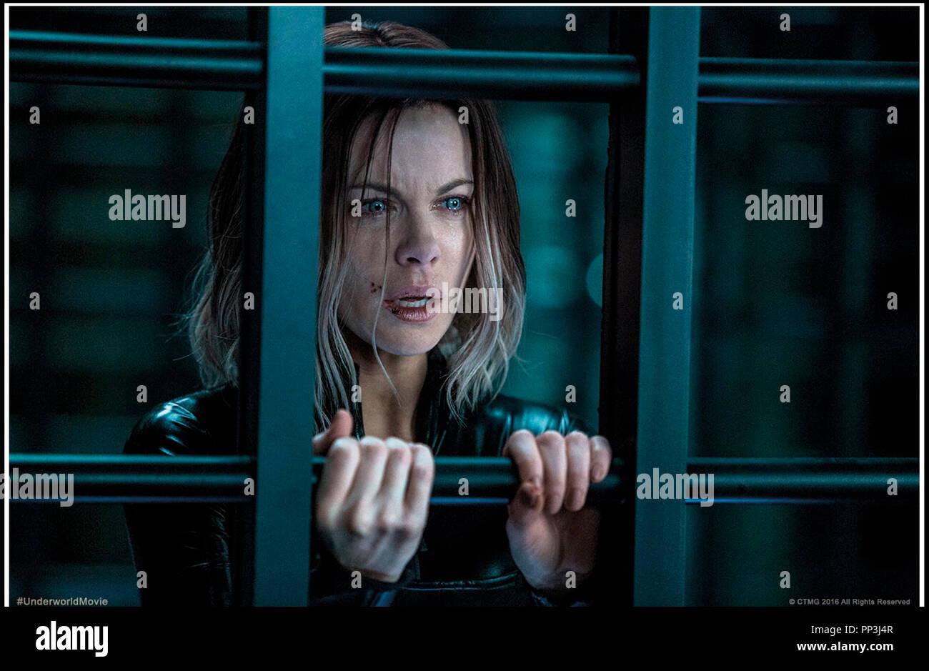 Prod DB © Lakeshore Entertainment - Screen Gems - Sketch Films / DR