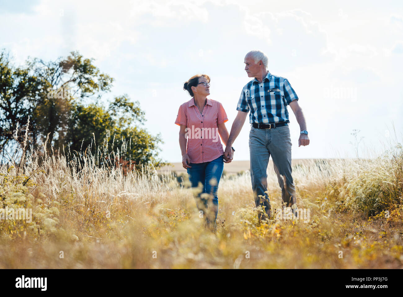 Senior couple walking over meadow holding each others hands - Stock Image
