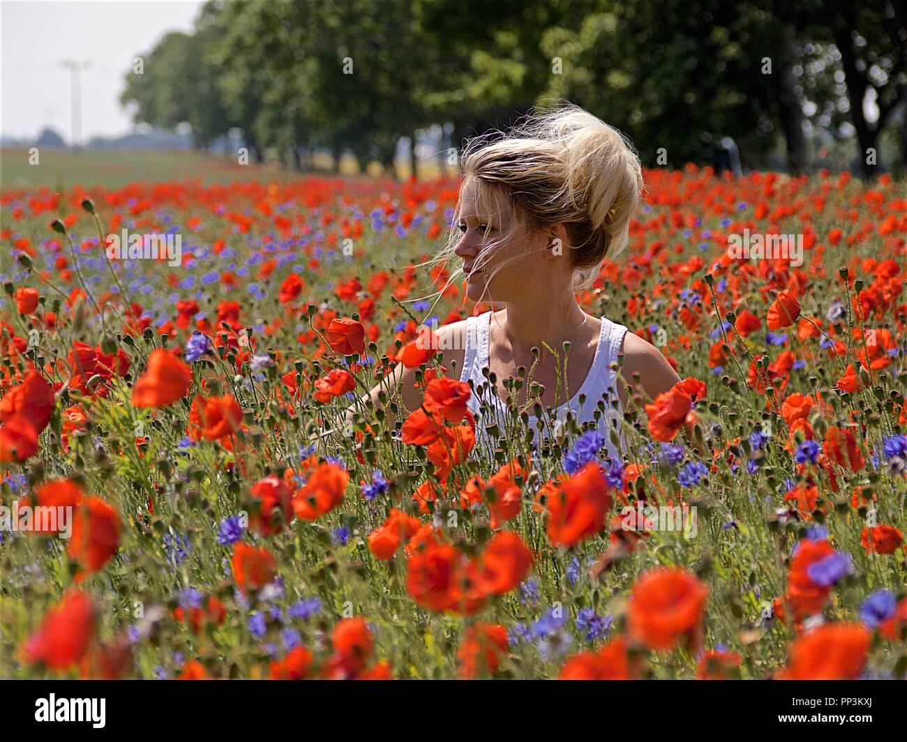 Woman in the flower field, Rügen Stock Photo