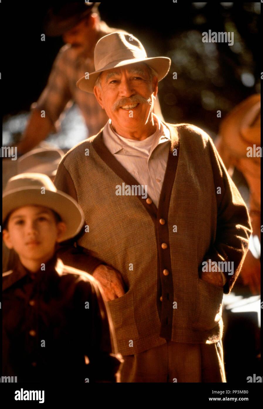 Prod DB © 20th Century Fox / DR LES VENDANGES DE FEU (A WALK IN THE CLOUDS) de Alfonso Arau 1995 USA avec Anthony Quinn fermier, paysan, patriarche - Stock Image