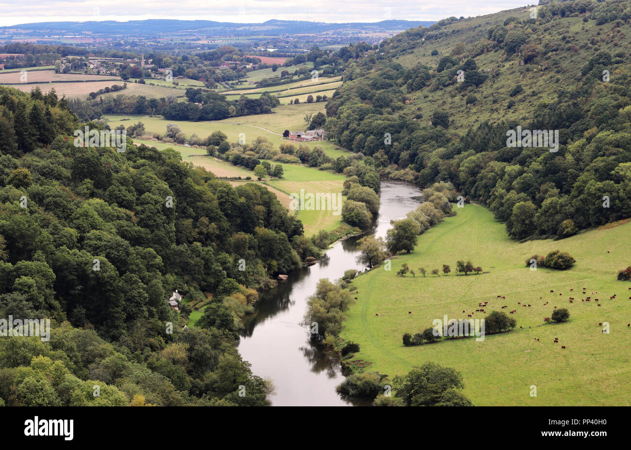 View from Symonds Yat Rock overlooking the river Wye - Stock Image