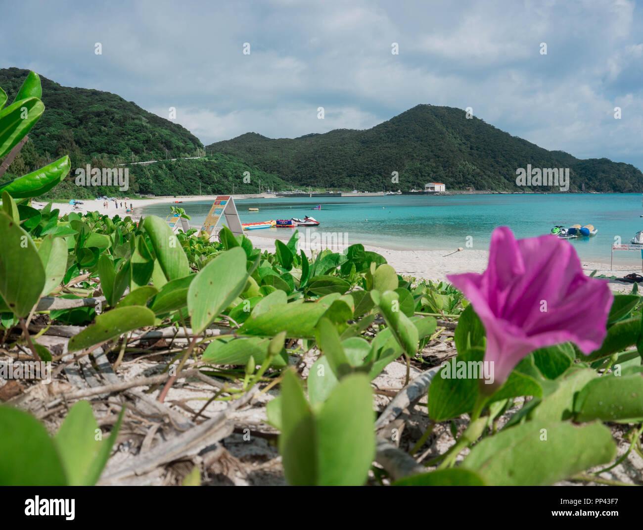 Tagesauflug auf die wunderschöne Insel Tokashiki in Okinawa. Stock Photo