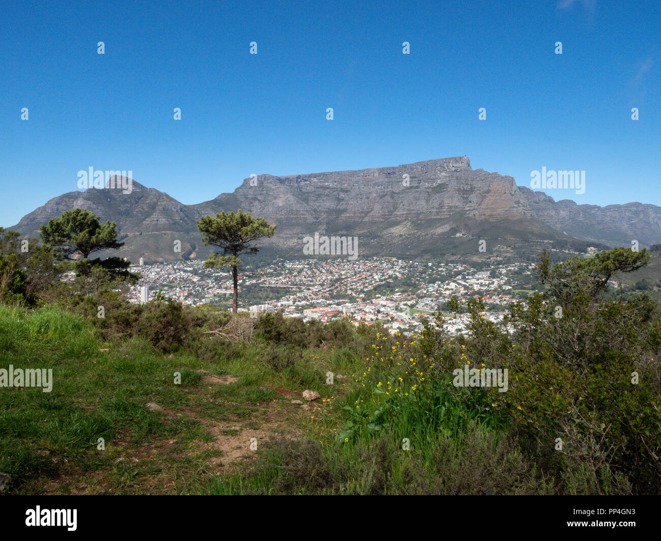 Table Mountain and Devil's Peak (left), Cape Town, South Africa, as seen from Signal Hill - Stock Image