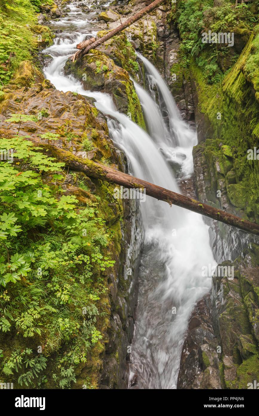 Sol Duc Falls, Olympic National Park, Washington state, USA - Stock Image