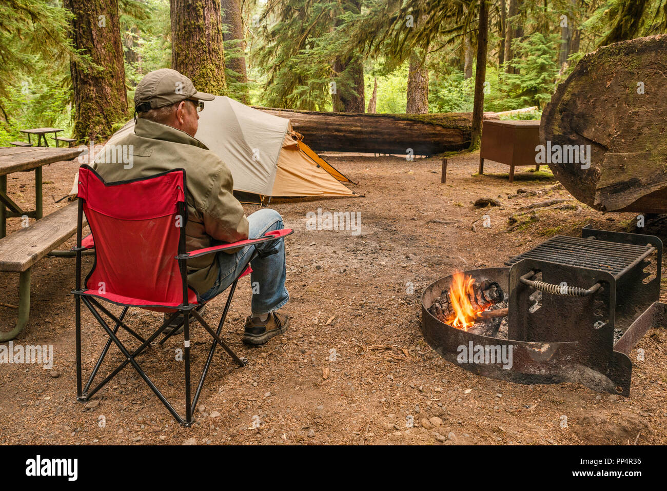 Senior adult relaxing at campfire in rainforest, Sol Duc Campground, Olympic National Park, Washington state, USA - Stock Image