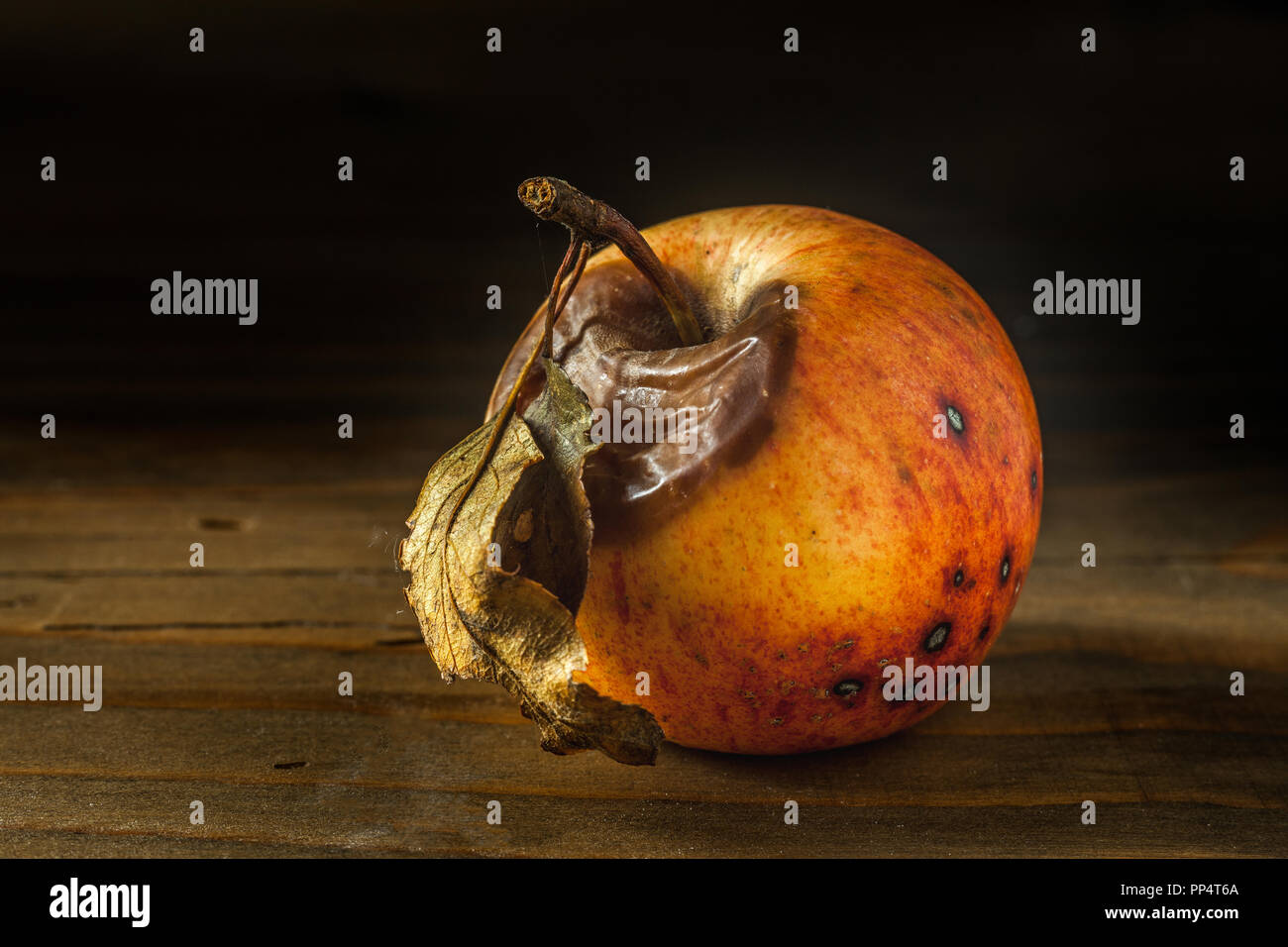 Genuine and organic rotten apples on a wooden table - Stock Image
