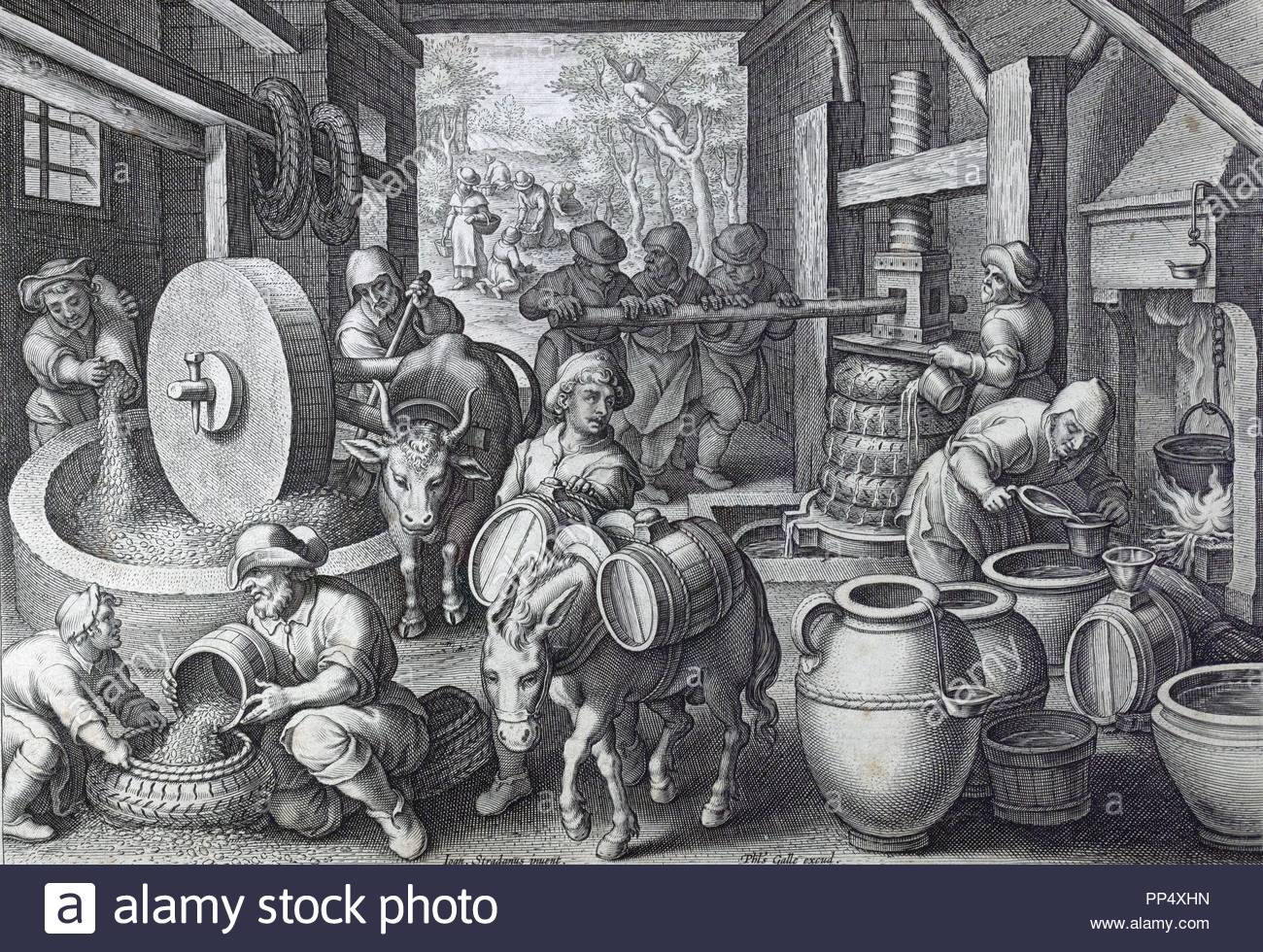 Oleum olivarum, the invention of the olive oil press, engraving circa 1591,  by Stradanus or Stratesis, 1523-1605 a Flemish artist working in 16th  century ...