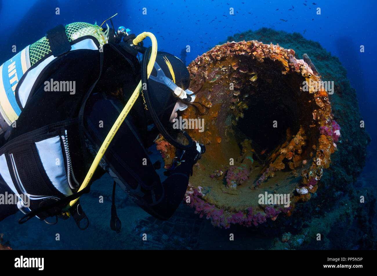 Female scuba diver with torch exploring the inside of a big tube with encrusted marine life at La Plataforma wreck (Formentera,Balearic Islands,Spain) - Stock Image