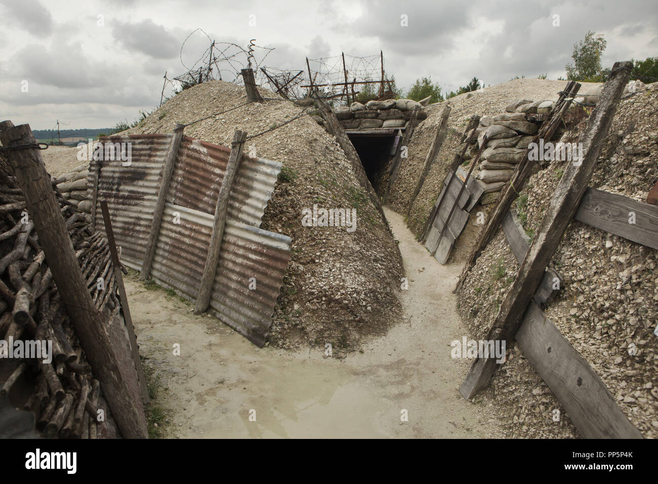 Trench with barbed wire entanglements used during the First World War in the Main de Massiges in Marne region in north-eastern France. The Main de Massiges was one of the major sites of the First World War from 1914 to 1918. The trench of German origin was conquered by the 23rd Colonial Infantry Regiment of the French Army on 25 September 1915 and was the first line of French defence from September to October 1915. Trenches and barbed wire entanglements in the area are restored by the Main de Massiges Association since 2009. - Stock Image