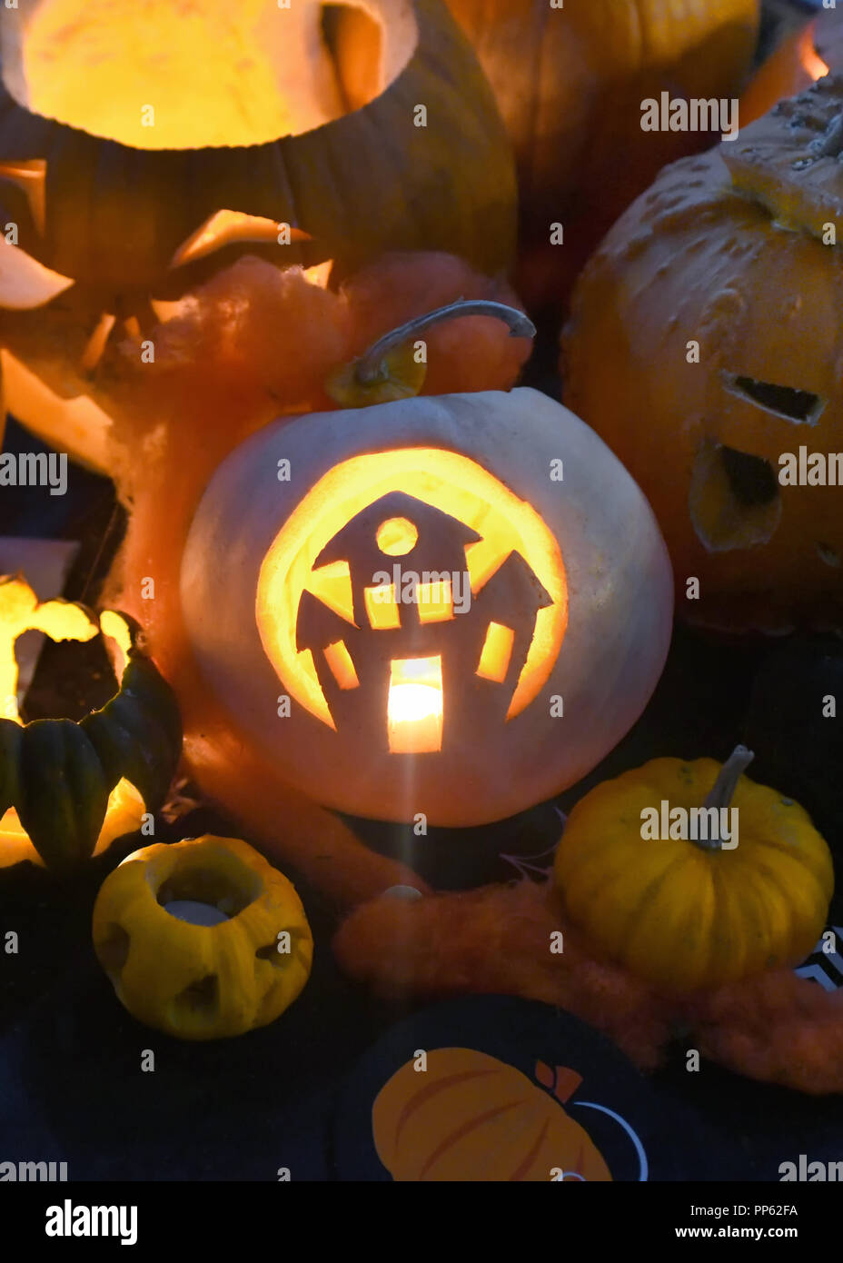 colletion of pumpkins  for halloween with a haunted house cut out vertical for posters and copy space - Stock Image