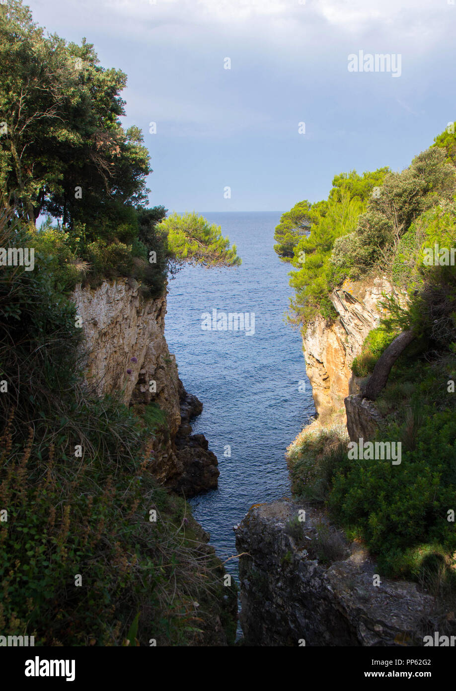 Sea bay on the Adriatic Sea. A cove surrounded by rocks and pine trees - Stock Image