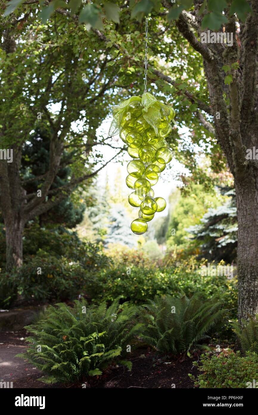 blown glass grapes by artist randall perkins hang from a tree at the oregon garden in silverton oregon usa - The Oregon Garden