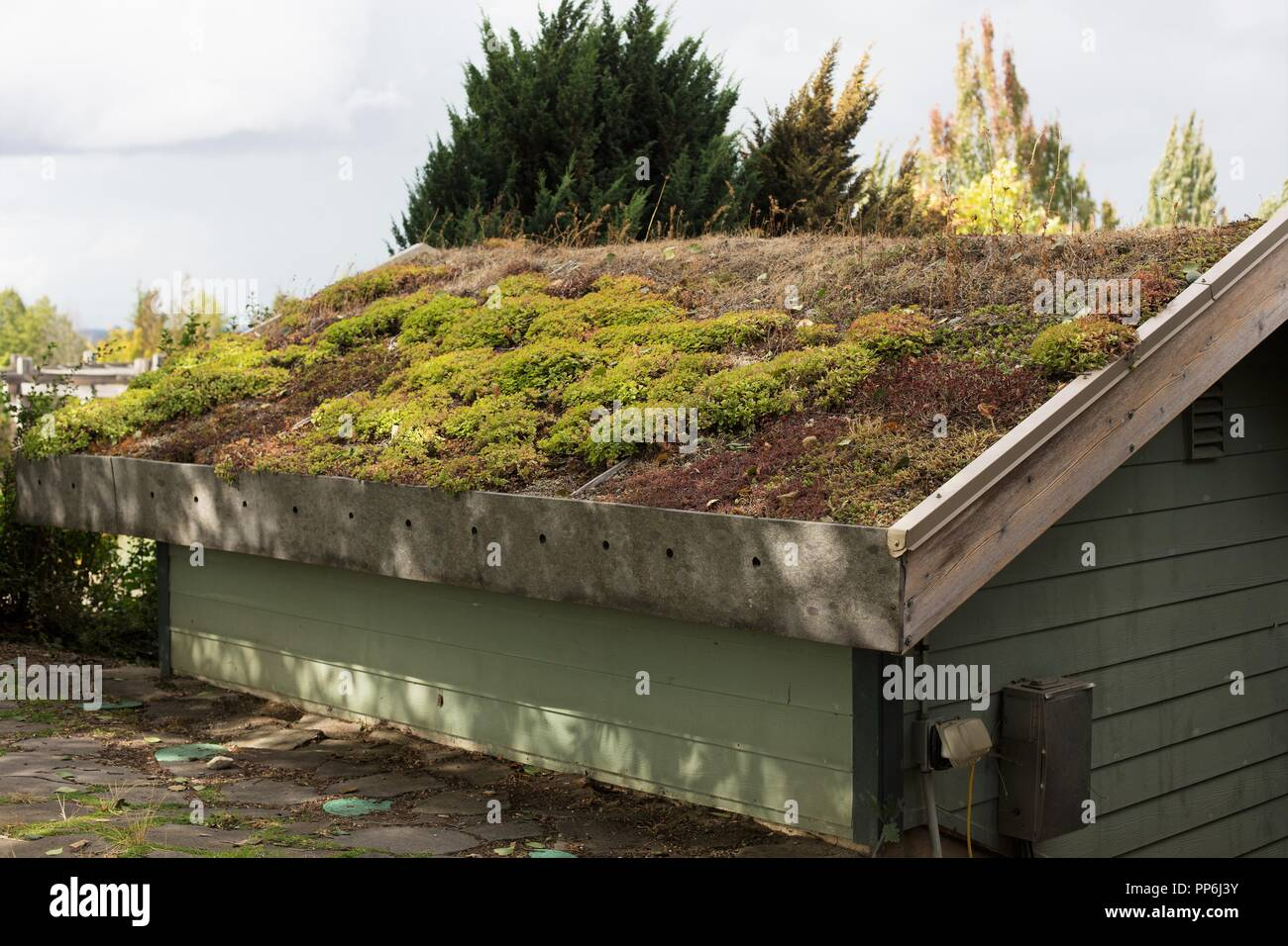 A building with an eco-roof, at the Oregon Garden in Silverton ...