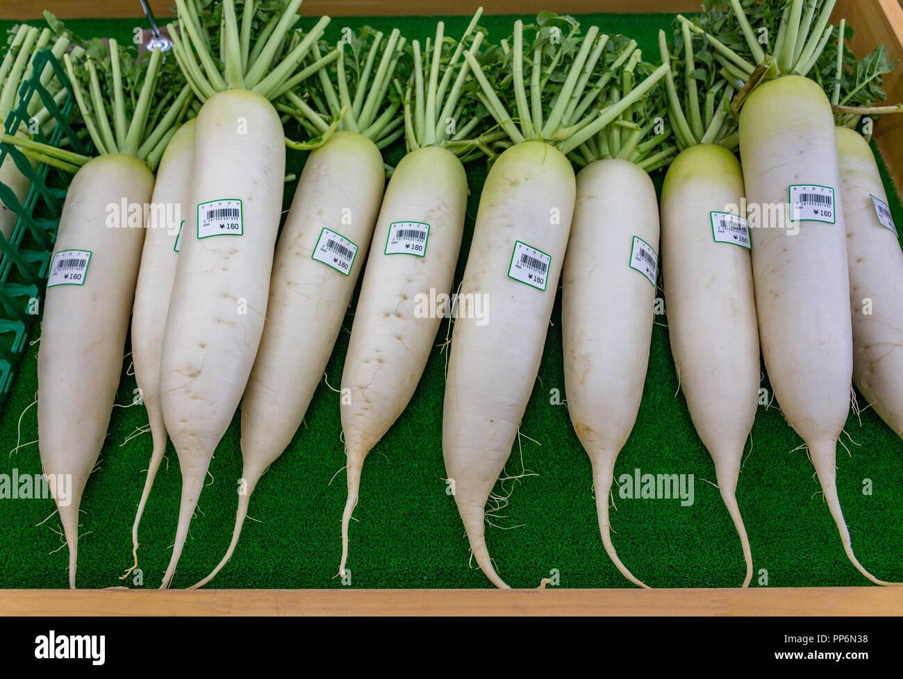 Daikon radish on sale at market, Japan - Stock Image