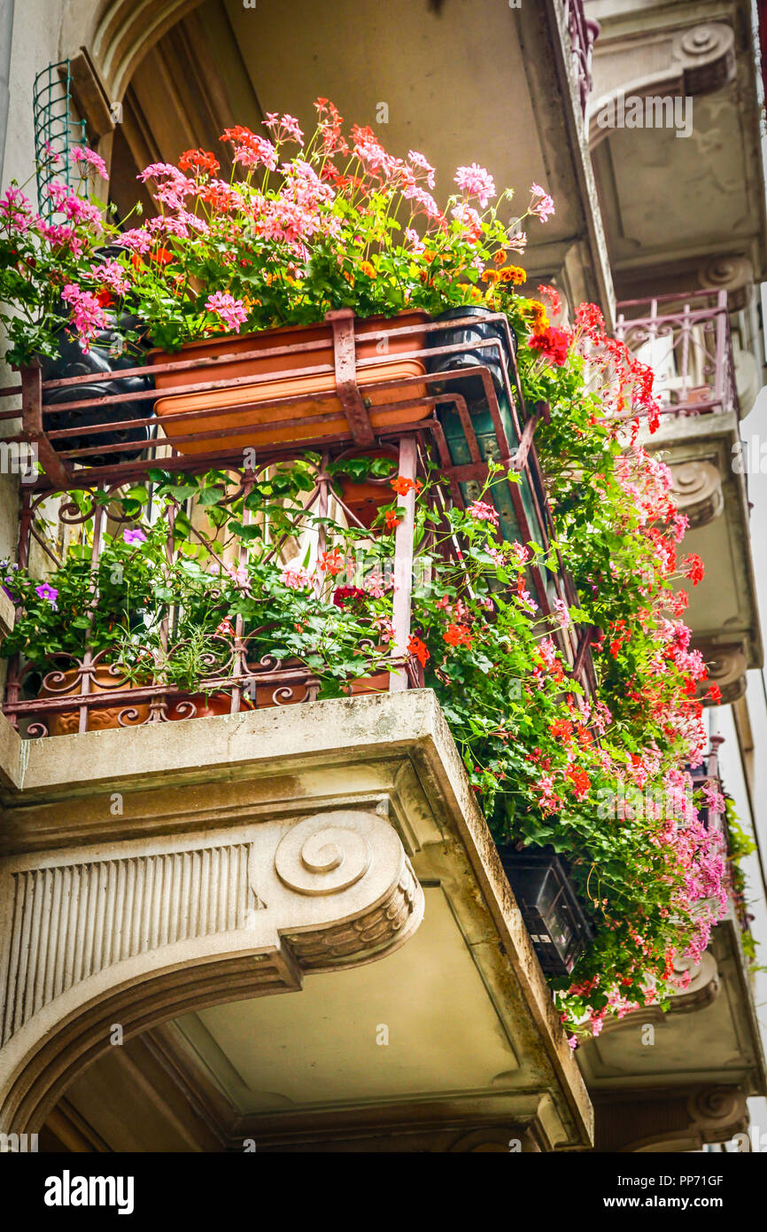 A Close Up Of Mass Flowers In Window Boxes On An Apartment Balcony