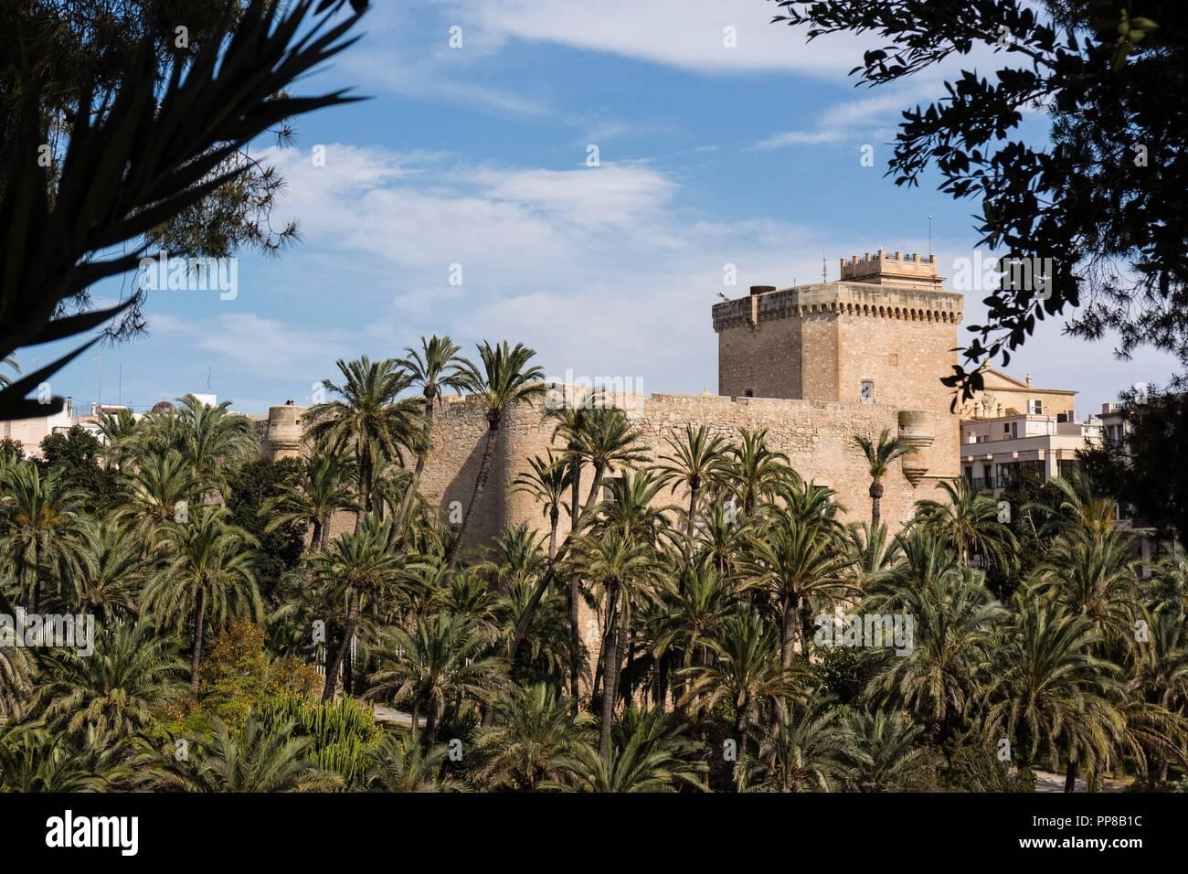 Palacio de Altamira,,  Palmeral de Elche, Patrimonio de la Humanidad por la Unesco, comunidad Valenciana, Spain. - Stock Image