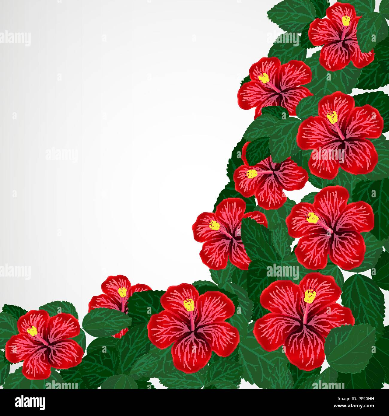 Floral Design Background Hibiscus Flowers Stock Vector Art