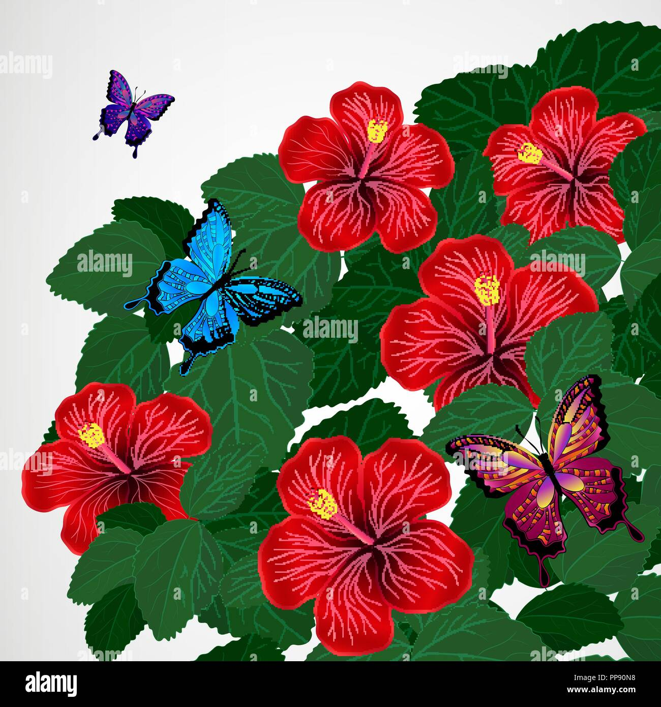 Floral Design Background Hibiscus Flowers With Butterflies Stock