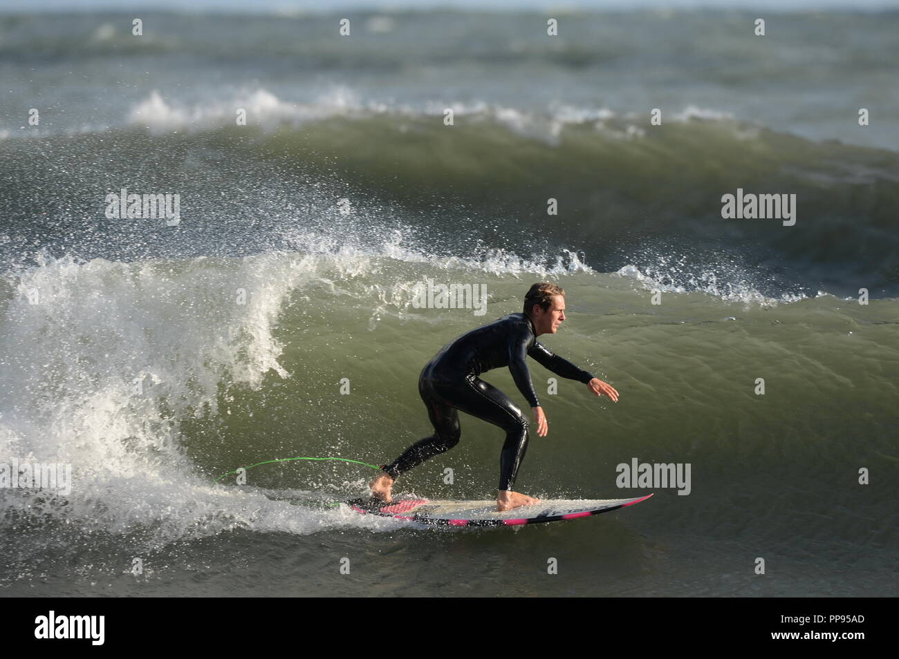 Surfing on the Gower - Stock Image