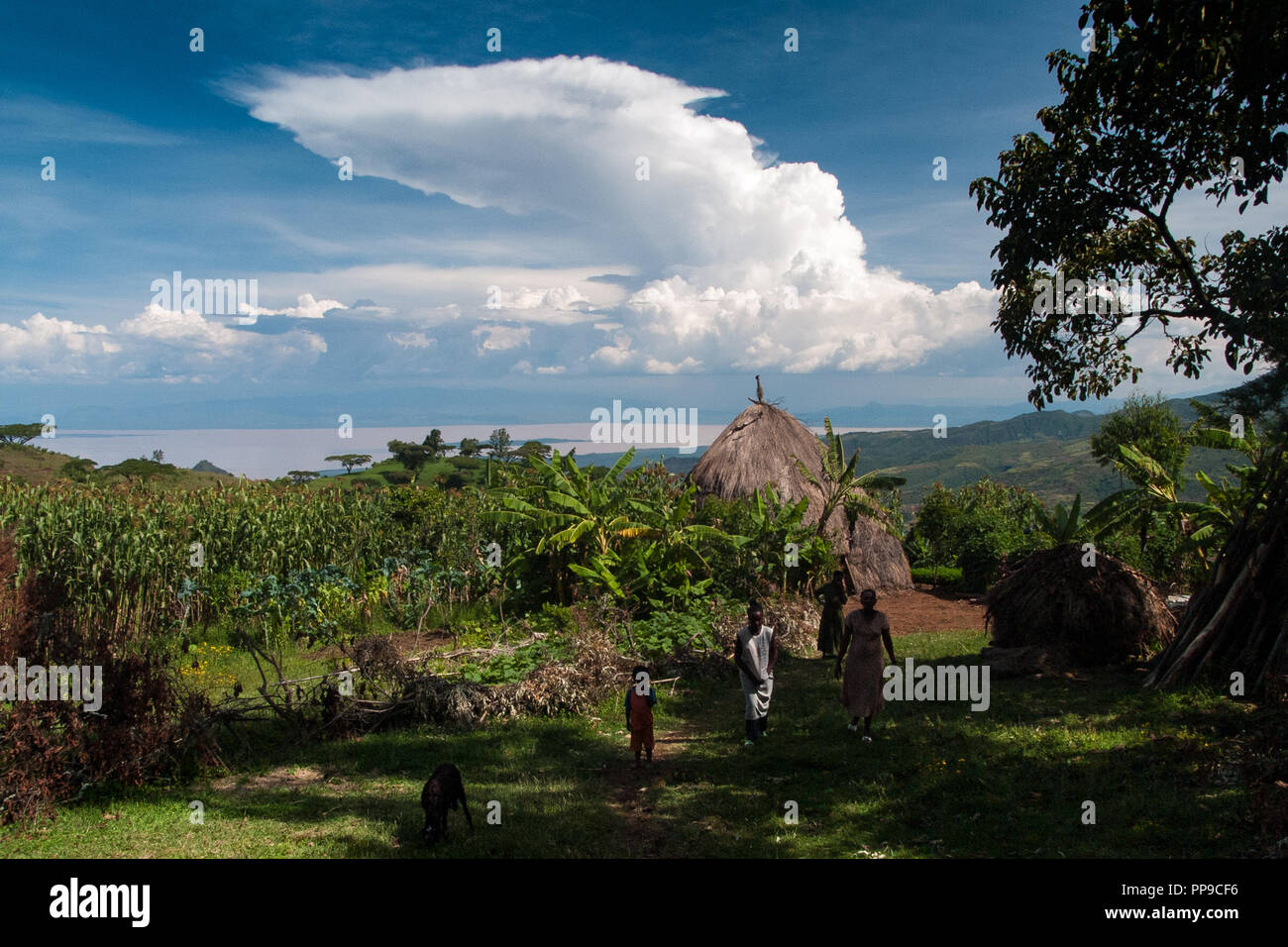 Small holding farm with views of a lake, Ethiopia. - Stock Image
