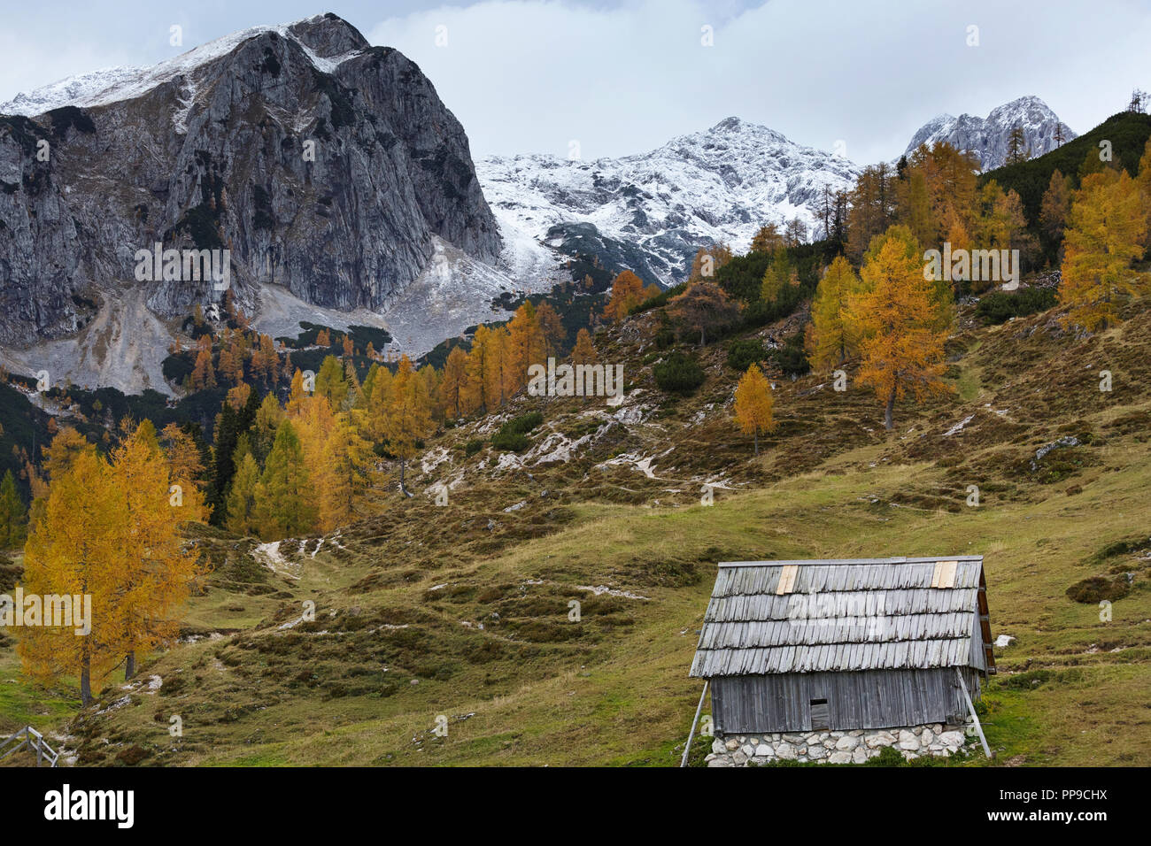 Colorful Alpine Meadow And Barn Below Misty Mountains