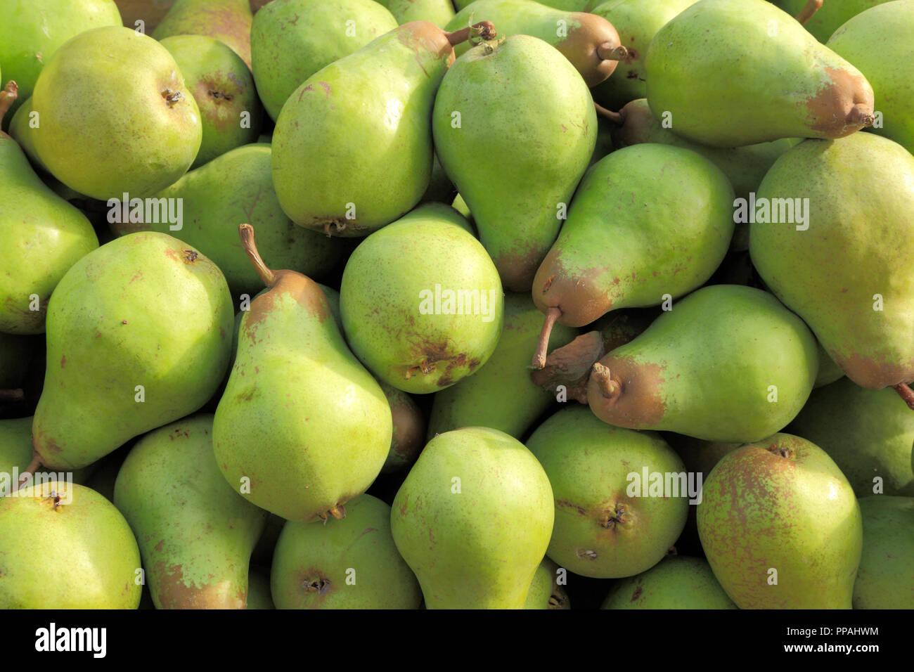 Pear, pears, Mertons Pride, pyrus, farm shop display, edible, fruit - Stock Image