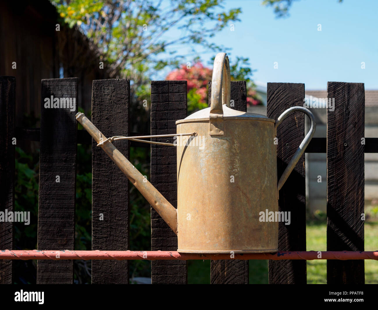 An old galvanized vintage watering can standing in front of a wooden picket fence against a blue sky - Stock Image
