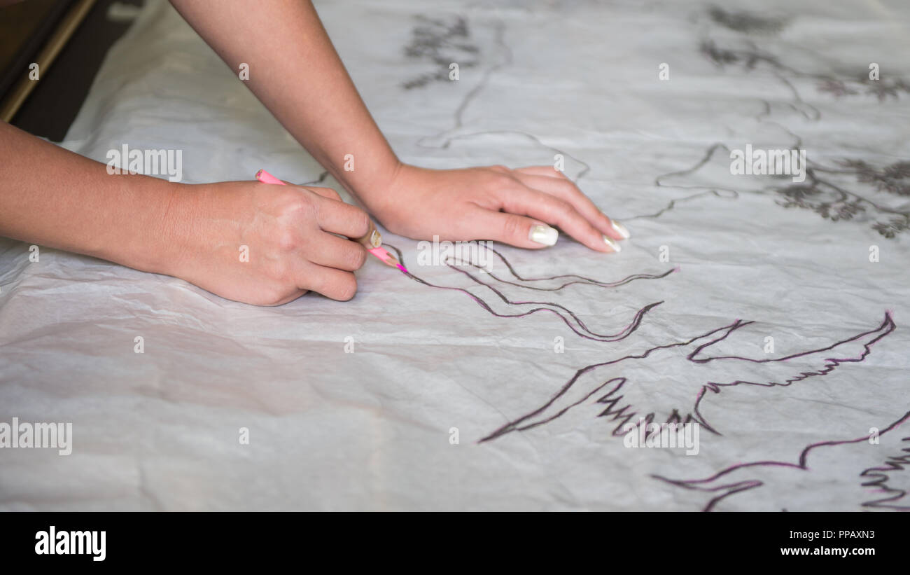the artist draws a sketch through tracing paper, close-up - Stock Image