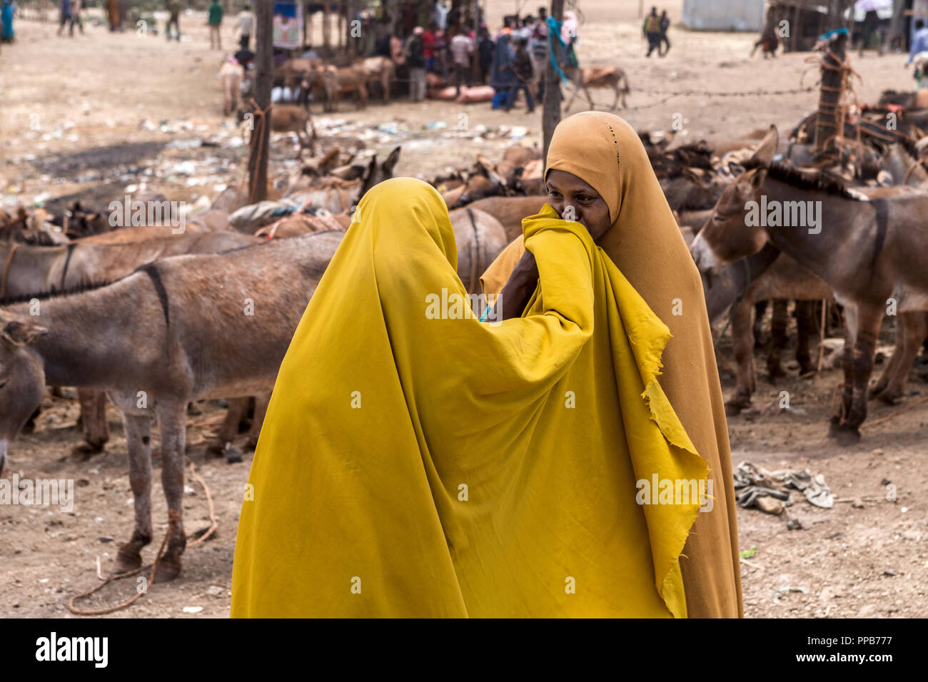 Relatives greeting each other by kissing hands, Dolo Mena market, Oromia Region, Ethiopia - Stock Image