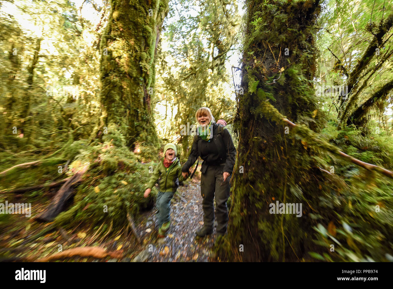 Mother with child hiking in El Bosque Encantado, temperate rainforest with moss and lichen, Carretera Austral - Stock Image