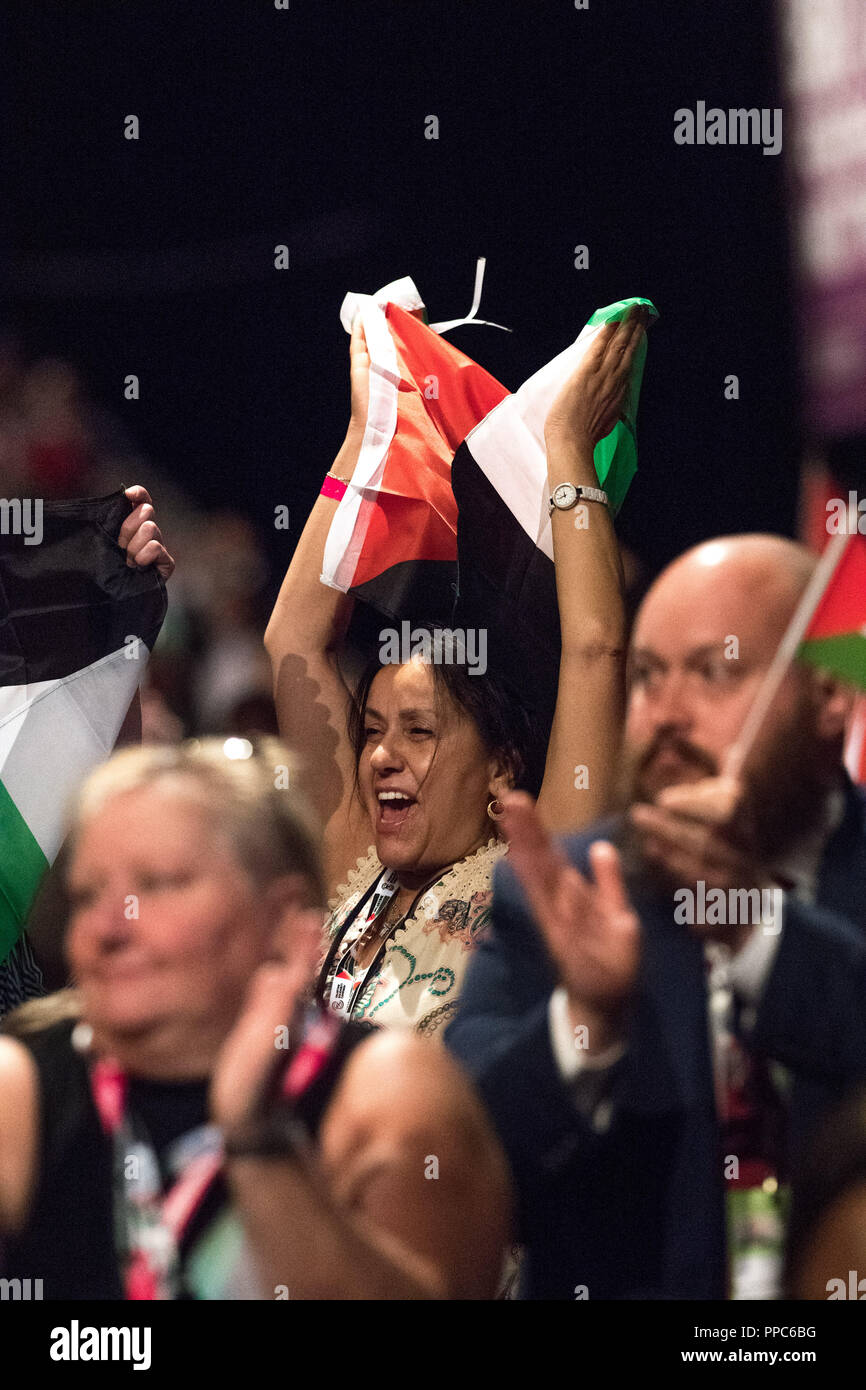Liverpool, UK. 25th Sep 2018. Labour Party Annual Conference 2018, Albert Docks, Liverpool, England, UK. 25th. September, 2018. Supporters for Free Palestine wave the Palestine flag at the Labour party Conference.Labour Party Annual Conference 2018. Alan Beastall/Alamy Live News - Stock Image