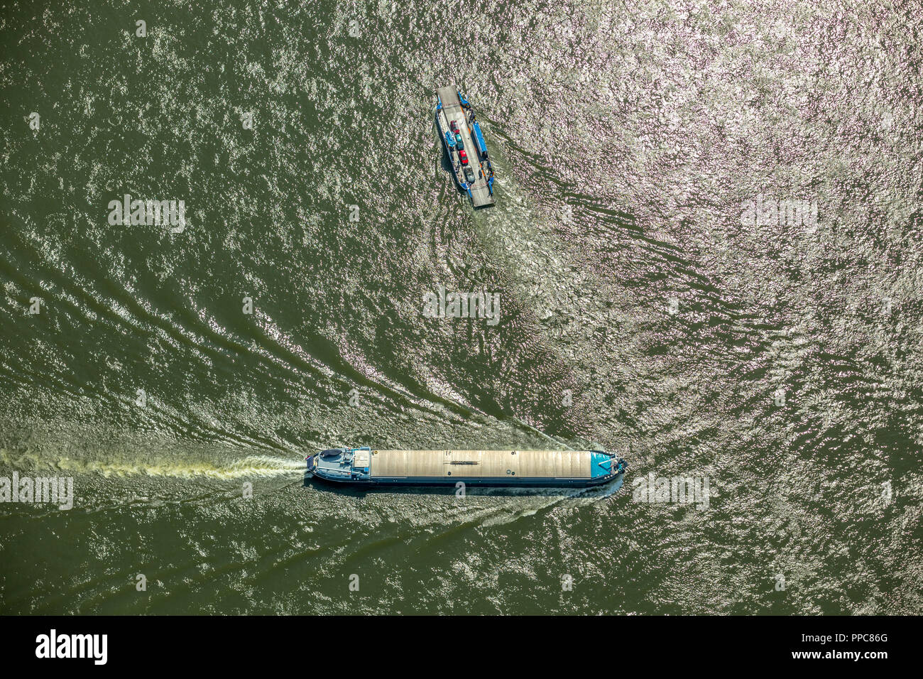 Aerial view, Cargo ship on the Rhine, closed barge, bulk carrier, with Rhine ferry at Walsum, inland waterway Duisburg - Stock Image