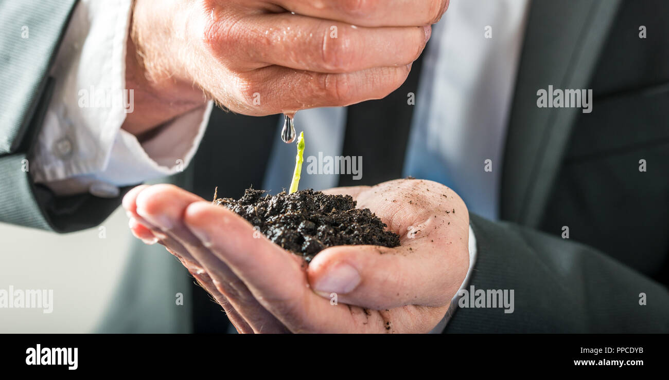 Businessman holding a sprouting seedling in fertile earth cupped in the palm of his hand watering it with the other in a conceptual image of environme - Stock Image
