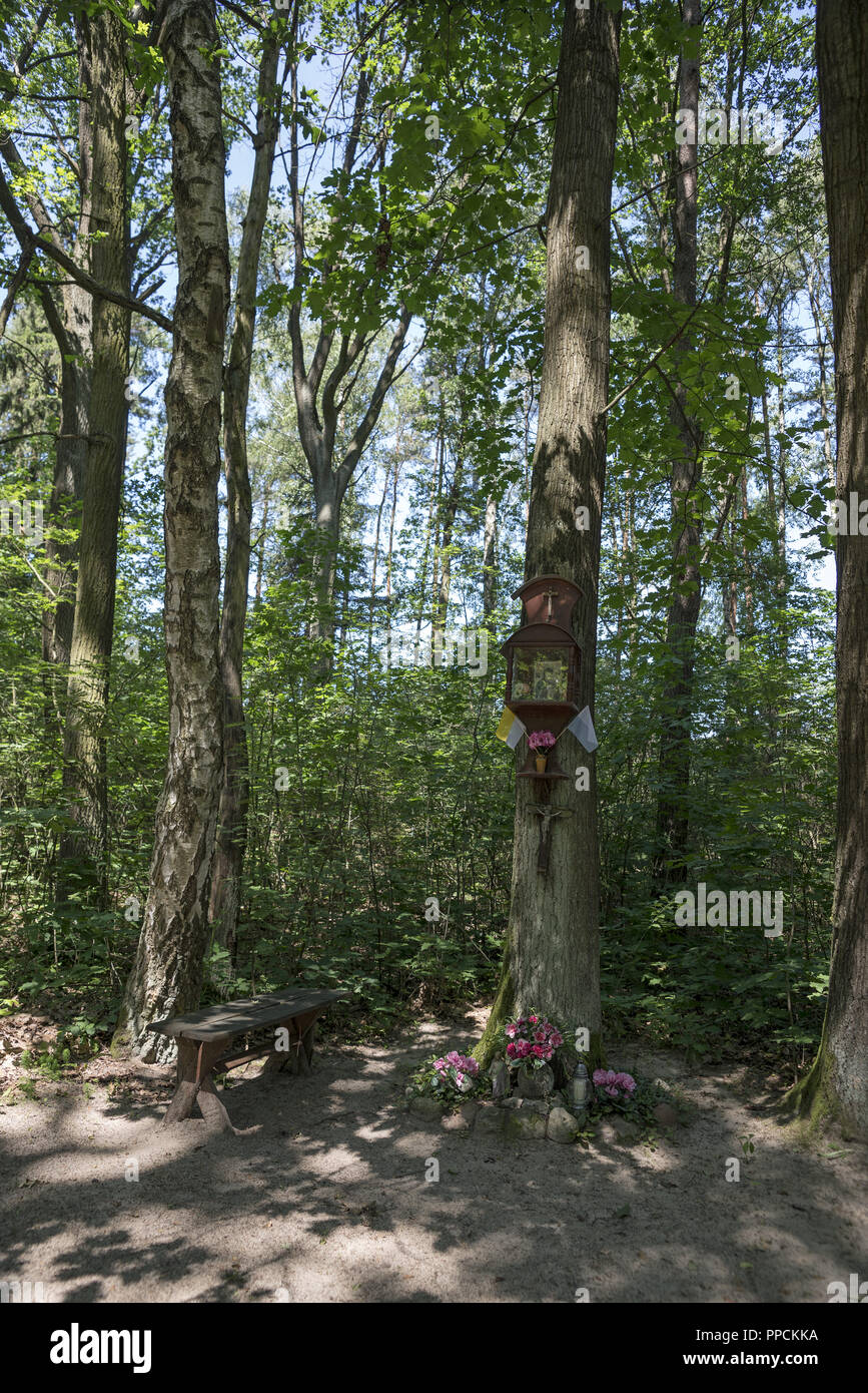 Small chapel suspended on a tree in a forest near Ostrzeszów, Poland. A sign of piety of the local population. - Stock Image