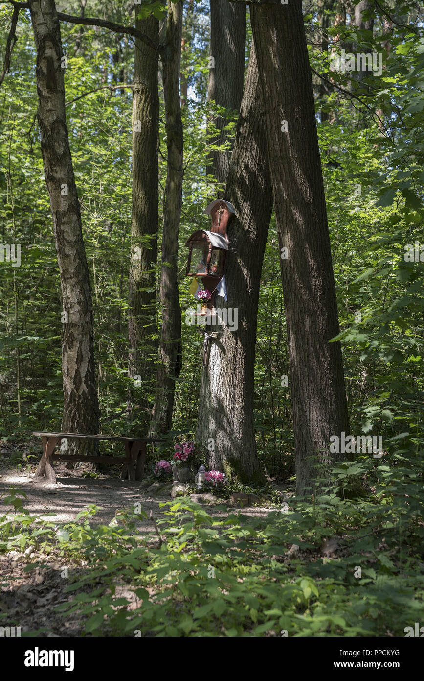 Small chapel suspended on a tree in a forest near Ostrzeszów, Poland. A sign of piety of the local population. Stock Photo
