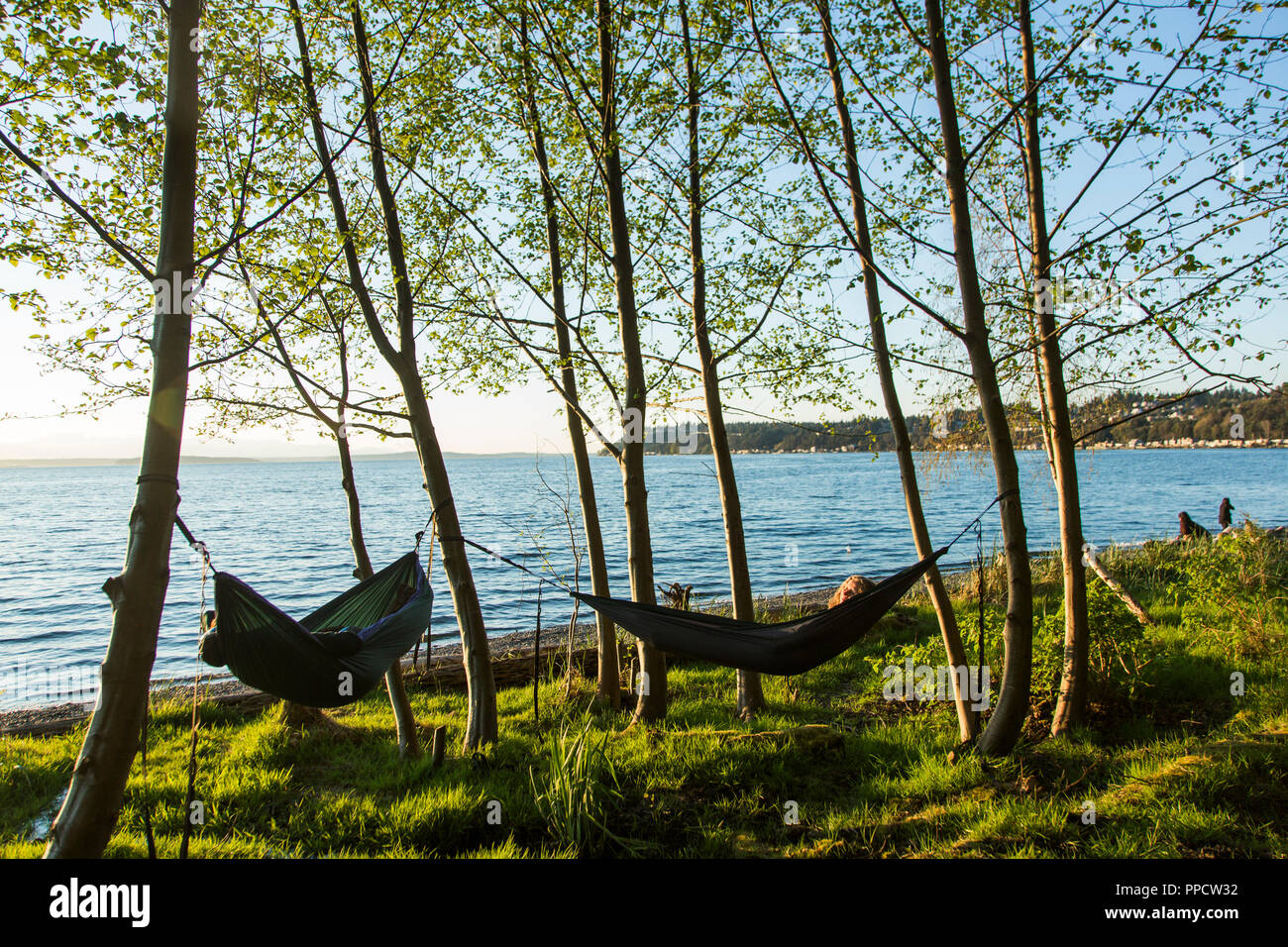 Two women relaxing in hammocks on coast, Seattle, Washington, USA - Stock Image